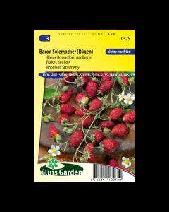 Aardbei (bos) Baron Solemacher - Sluis Garden - Zaden